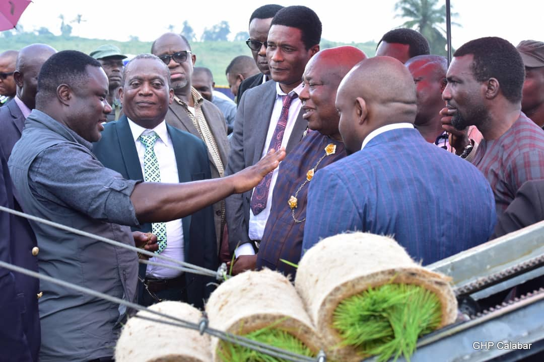 Cross River, NDDC to partner on rice value chain