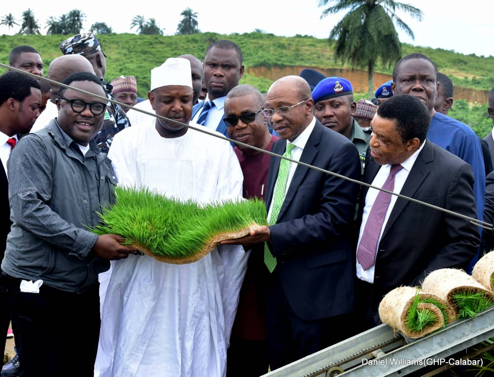 COVID-19: Ayade cries out to CBN, says state may lose billions of Naira over rice seedlings order